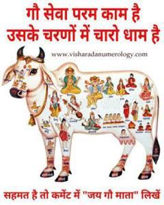 go dhaan visharada numerology giridhhar astro numerologist